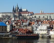 Koloběžka pro dospělé i v Čechách